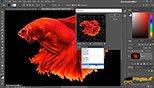 فیلترهای fragment – mosaic – pintillize در بخش فیلتر pixelate در فتوشاپ photoshop