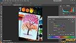 ترفند هیو سچوریشن Hue Saturation جهت اصلاح رنگ و نور تصاویر در فتوشاپ عکاسی