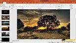 مدیریت تصاویر با استفاده از تب images در نرم افزار پاورپوینت 2019-  PowerPoint 2019