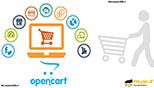 آشنایی با فروشگاه های تحت وب و تجارت آنلاین