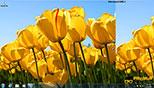 استفاده از top rated photos برای تغییر پس زمینه در ویندوز 7 Windows 7